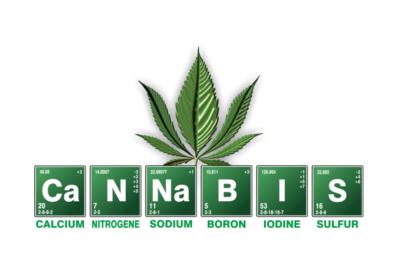 Cannabis by Kyrnos Pixabay